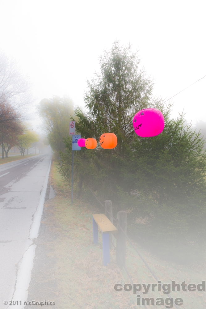 Foggy Bus Stop with Jack O Lanterns at Halloween